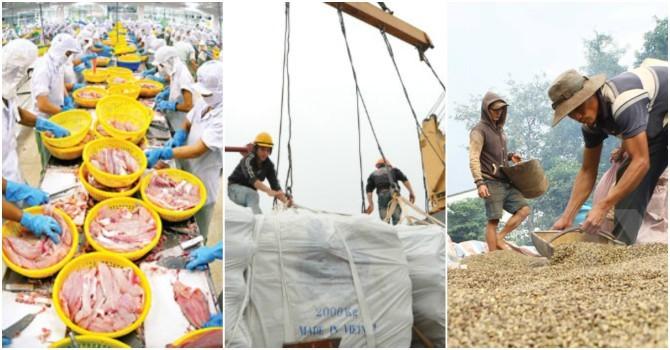 Giá trị xuất khẩu nông, lâm, thủy sản đồng loạt giảm