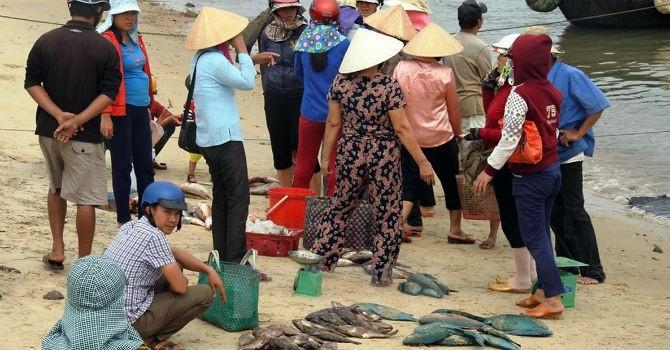 Bộ Công Thương công bố đường dây nóng gỡ khó cho ngư dân ven biển miền Trung