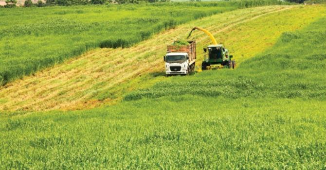 Quảng Ninh: Doanh nghiệp là trọng tâm thúc đẩy phát triển nông nghiệp