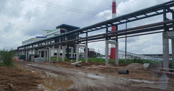 """Dự án nhà máy giấy tỷ USD của Trung Quốc sẽ """"huỷ hoại nguồn thuỷ sản""""?"""