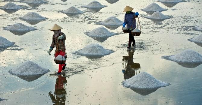 Thị trường 24h: Muối ế trắng đồng