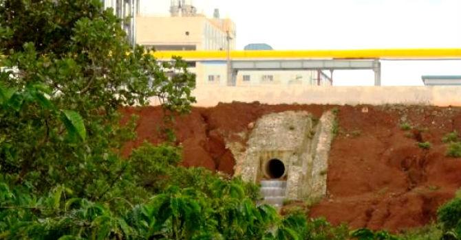 """Vỡ đường ống Alumin Nhân Cơ: Cá chết, nhưng """"hóa chất không ảnh hưởng đến môi trường"""""""