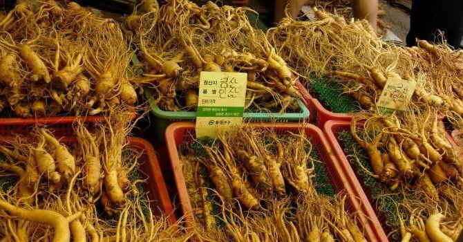 Thị trường 24h: Cuộc chiến nhân sâm Trung - Hàn tại thị trường Việt Nam