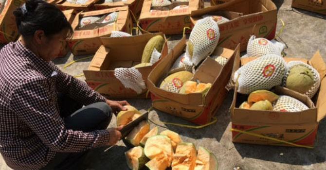 Thị trường 24h: Muôn nẻo tuồn hàng lậu, làng nghề mứt tết Xuân Đỉnh đang chết