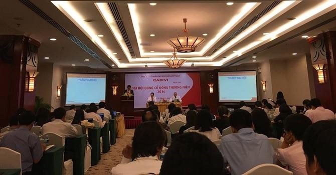 ĐHĐCĐ Cadivi: GEX liệu có đầu tư thêm?