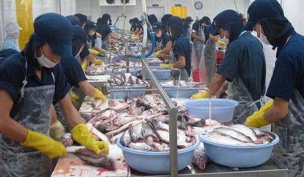 Cần Thơ: Xuất khẩu hàng hóa giảm 14% so với cùng kỳ