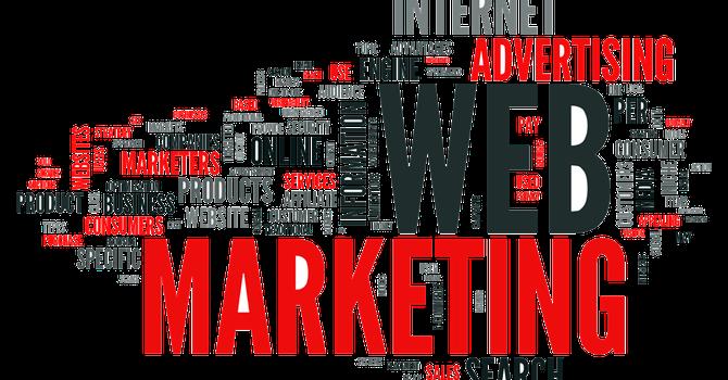 BizLIVE tuyển 01 phụ trách marketing