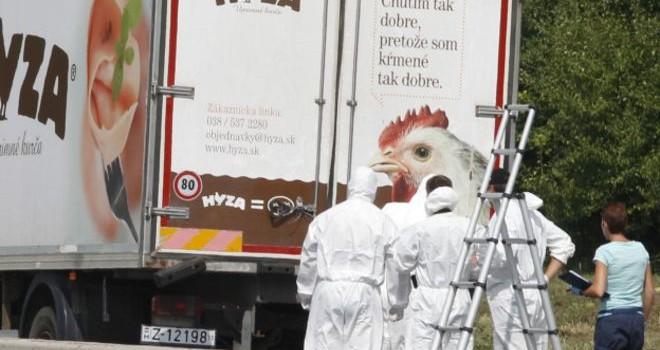Bắt 4 người trong vụ 71 di dân chết ở Áo