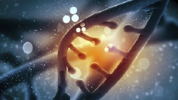 Anh cho biên tập gene trong bào thai người