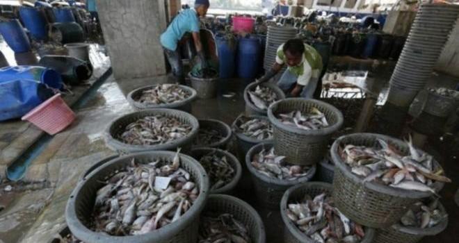 Thái Lan bắt tội phạm thao túng ngành thủy sản