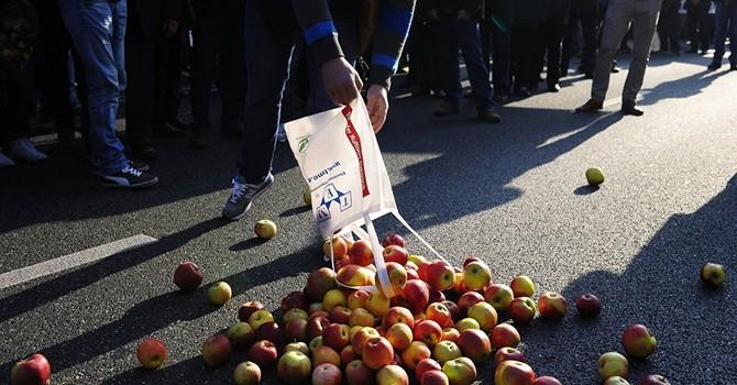 Nông nghiệp EU mất 6 tỷ USD vì lệnh trừng phạt chống Nga