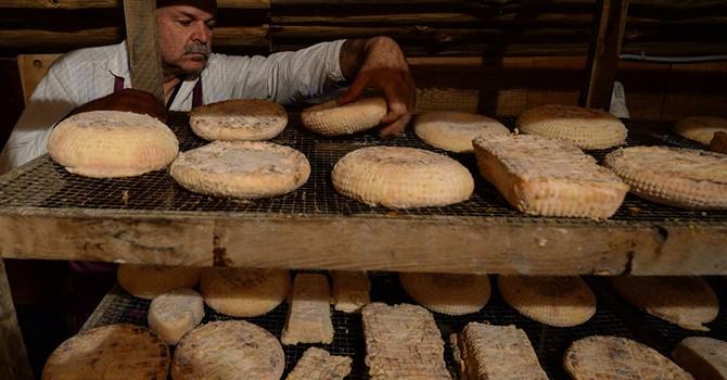 Lệnh cấm vận thực phẩm đã giúp Nga kiềm chế lạm phát?
