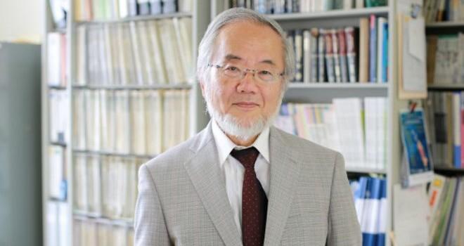 Nobel Y học vinh danh người Nhật