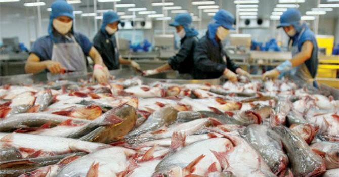 Lợi nhuận ngành thủy sản: Tăng giảm khó lường