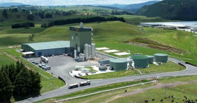 Vinamilk rót hơn 76 tỷ đồng vào hãng sữa New Zealand
