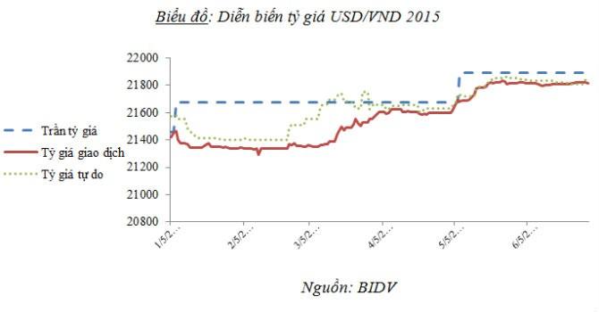 """BIDV: Tỷ giá sẽ có """"sóng"""" mạnh vào cuối năm"""