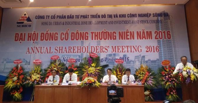 ĐHĐCĐ SUDICO: 2016 sẽ tập trung vào Nam An Khánh
