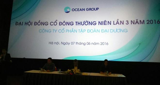 ĐHĐCĐ OGC lần 3: Có thể triển khai 2 dự án trong năm 2016