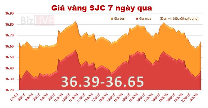 """Giá vàng SJC """"ngóc đầu"""" tăng nhẹ"""