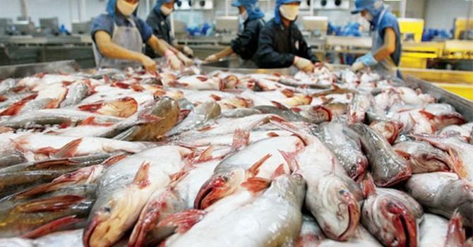 Thủy sản Hùng Vương báo lãi 500 tỷ đồng niên độ 2015 - 2016