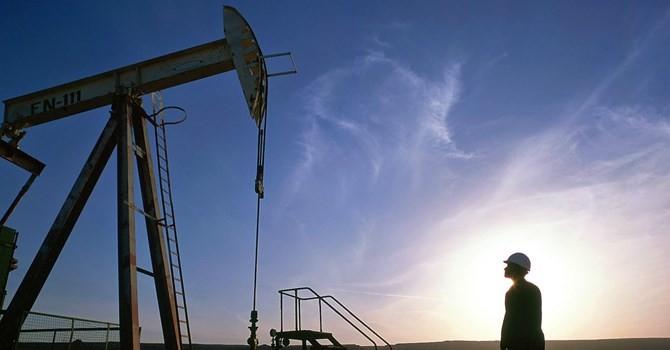 """Doanh nghiệp 24h: Doanh nghiệp """"họ P"""" gặp khó vì giá dầu"""