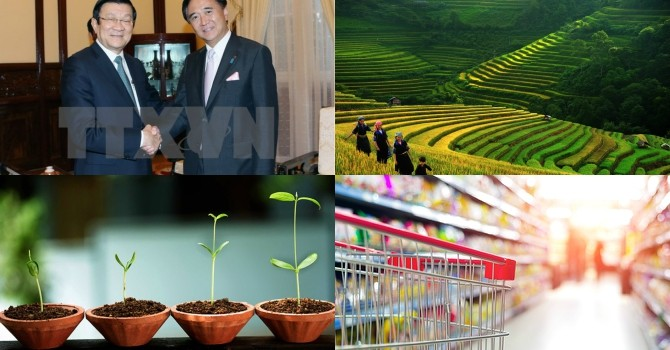 President Calls for Japanese Investment; Foreign Venture Funds Land on Vietnam