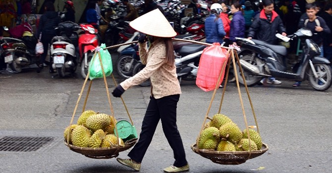 Finance Ministry Admits Vietnam Public Debt Stays High