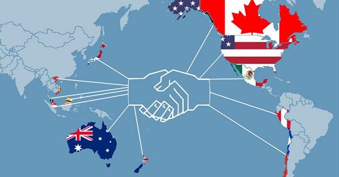 U.S. to Abolish Sizeable Tariffs on Vietnam Imports under TPP Pledges