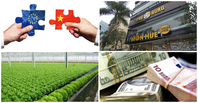 [Round-up] Disbursed FDI Likely to Hit Record High, Japan Firms Keen on Vietnam Agriculture