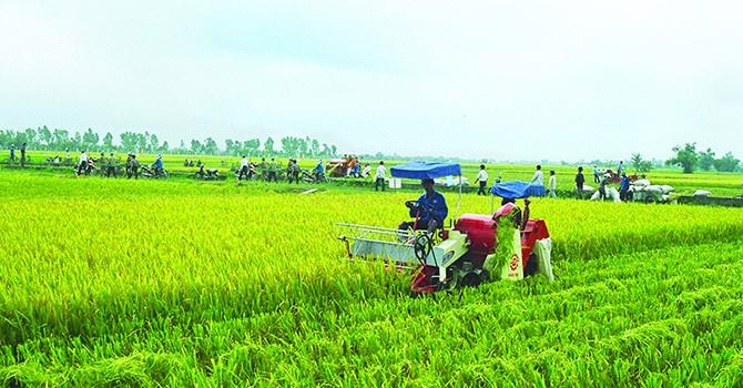 Vietnam Localities Hurry Japanese Investors