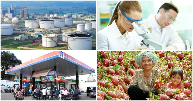 [Round-up] Japanese Businesses Eye Expansion in Vietnam, JX to Buy into Petrolimex