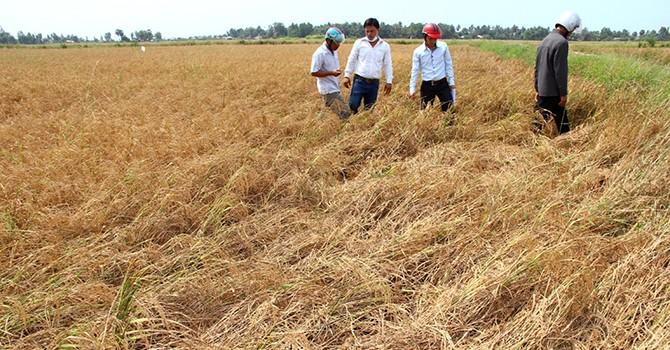Think Tank Cautions Vietnam Gov't about Economic Slowdown