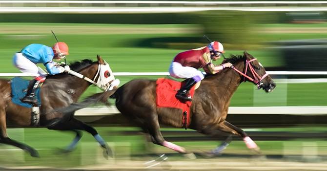 Hanoitourist, South Korean Firm Revive $500 Million Horse Racing Project