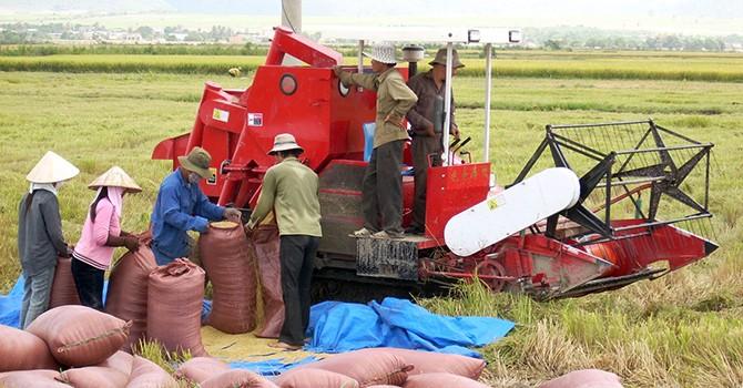 Vietnam's Q2 Economic Growth Quickens to 6.17%: Gov't Data