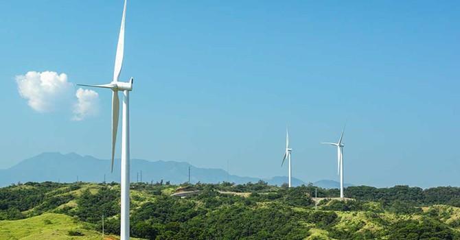 Filipino Conglomerate Ayala Eyes Renewable Plants in Vietnam