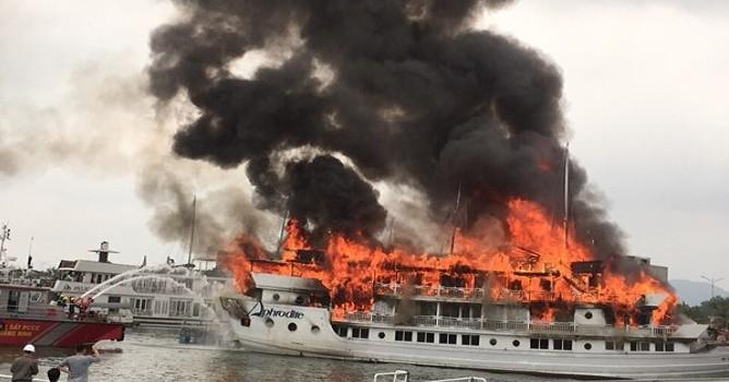 Vụ cháy tàu ở Tuần Châu: Tạm dừng hoạt động nhiều tàu du lịch