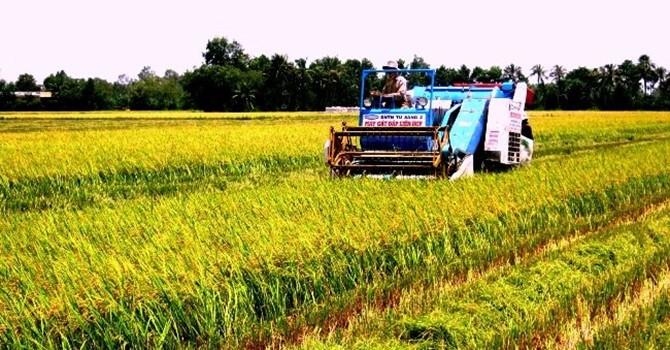 """Ngành nông nghiệp: """"Có lợi thế thị trường, cần khai thác tối đa"""""""