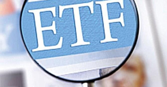 Market Vectors Vietnam ETF tiếp tục mất tiền dù dòng vốn đảo chiều