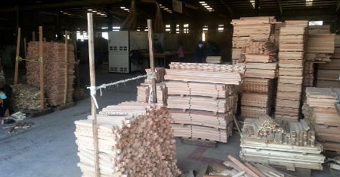 EU chỉ chấp nhận nhập khẩu gỗ có nguồn gốc hợp pháp