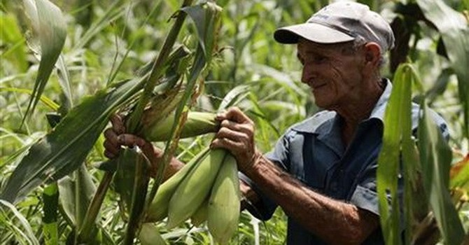 Doanh nghiệp Anh có kế hoạch đầu tư 400 triệu USD vào Cuba