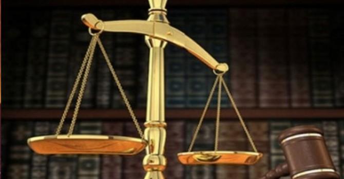 Thua kiện, V11 phải trả hơn 9 tỷ đồng BHXH và những khoản công nợ mập mờ