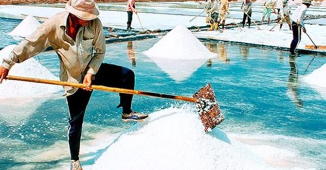 Diêm dân lao đao vì muối không bán được