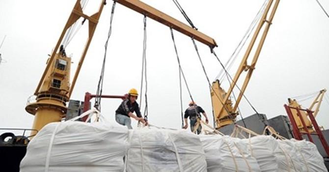 Đưa giá thấp nhất, Việt Nam vẫn trượt thầu 100.000 tấn gạo cho Philippines