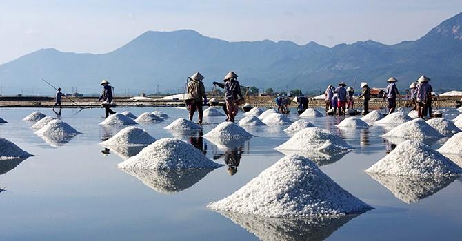 Cấp thiết tái cơ cấu ngành muối