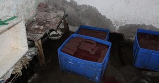 Rùng rợn cảnh làm tiết vịt giả ở Trung Quốc