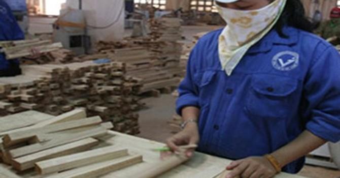 Doanh nghiệp xuất khẩu gỗ kỳ vọng vào đề án tái cơ cấu ngành lâm nghiệp