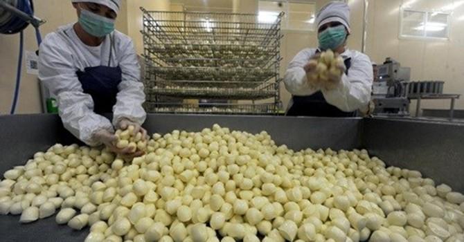 Bị cấm nhập khẩu từ EU, người Nga tăng cường buôn lậu