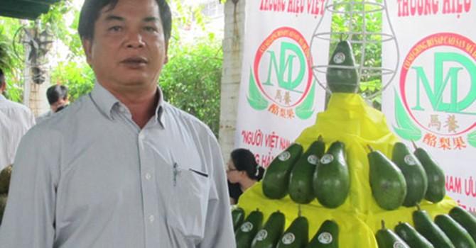 Kiếm tiền tỷ nhờ trồng bơ sáp ở Bình Phước