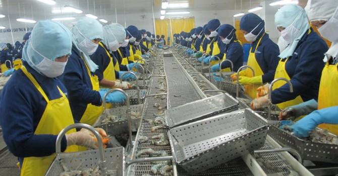 Nên miễn thuế nguyên liệu nhập để sản xuất hàng hóa xuất khẩu
