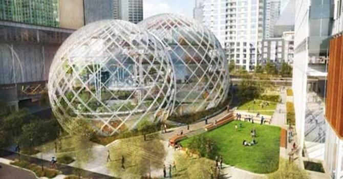 """Amazon: Nơi làm việc như """"đấu trường sinh tử"""""""